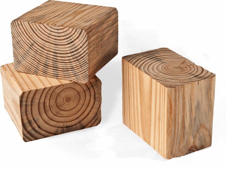 pine-wood-1